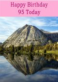 Happy Birthday - 95 Today - Option 2